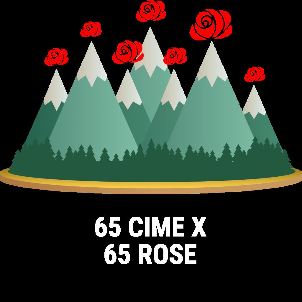 65 cime x 65 rose